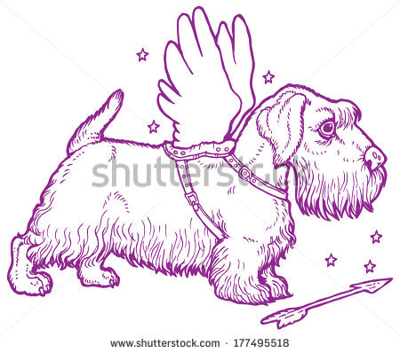 Sealyham Terrier clipart #9, Download drawings