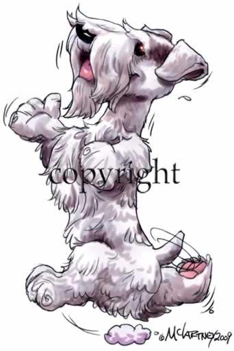 Sealyham Terrier clipart #17, Download drawings