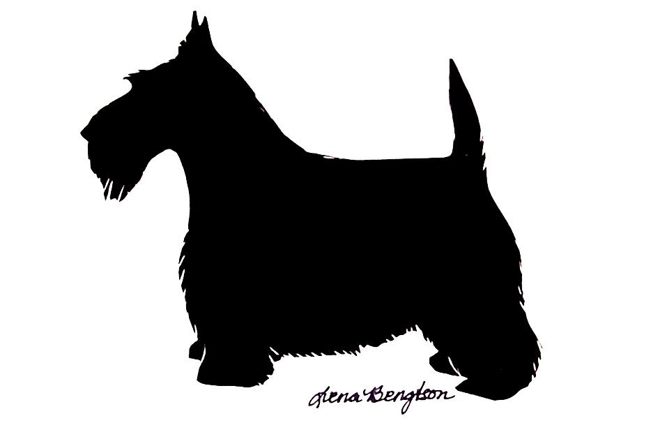 Sealyham Terrier clipart #15, Download drawings