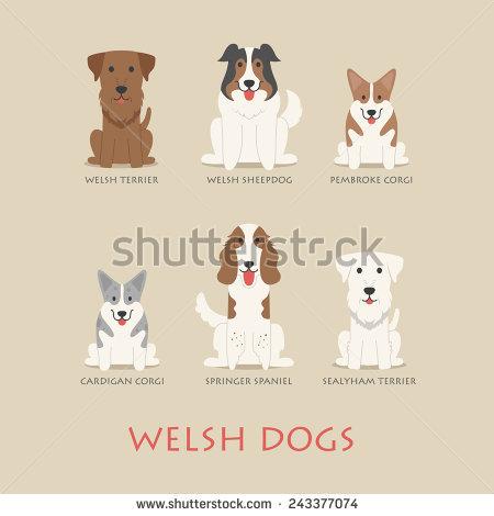 Welsh Terrier svg #6, Download drawings