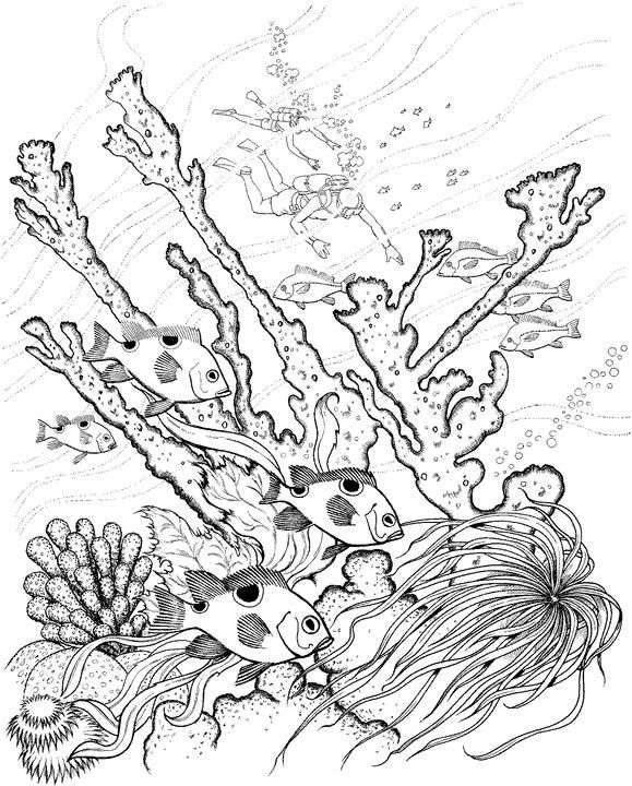 Drown By Water Nitghtmare coloring #17, Download drawings
