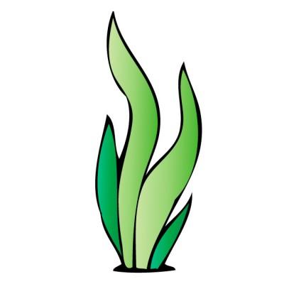 Seaweed clipart #20, Download drawings