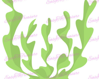 Seaweed clipart #7, Download drawings