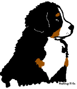 Sennenhund clipart #19, Download drawings