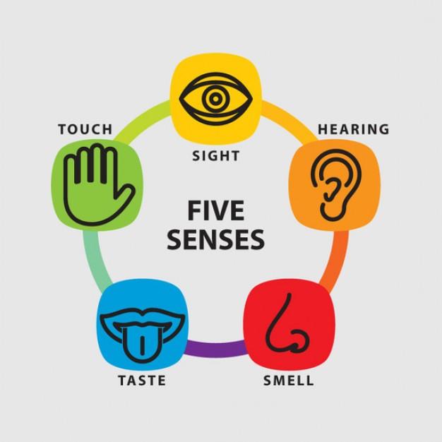 Senses clipart #6, Download drawings