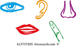 Senses clipart #5, Download drawings
