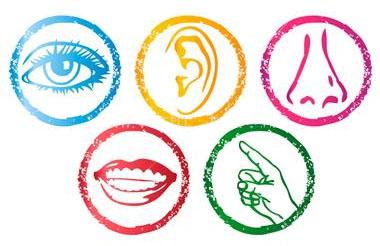 Senses clipart #19, Download drawings