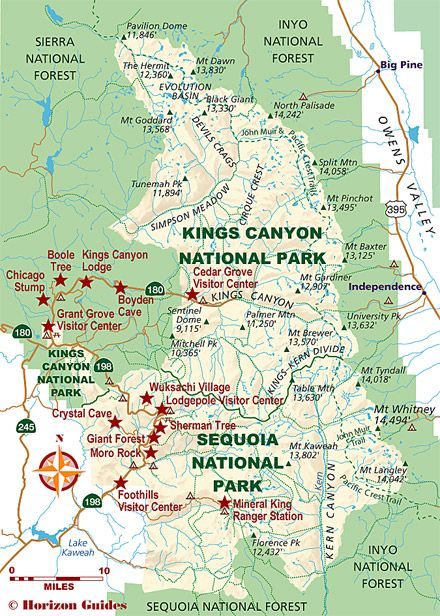 Sequoia National Park clipart #13, Download drawings