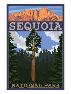 Sequoia National Park clipart #19, Download drawings