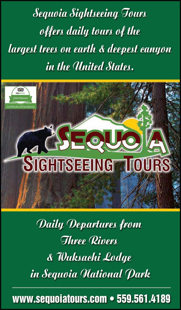 Sequoia National Park svg #15, Download drawings