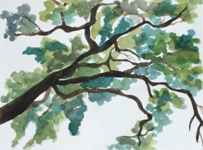 Serene clipart #5, Download drawings