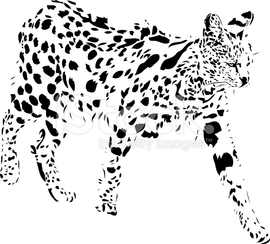 Serval clipart #13, Download drawings