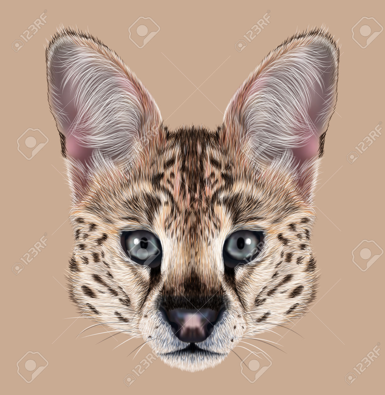Serval clipart #2, Download drawings