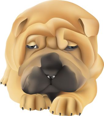 Shar Pei clipart #10, Download drawings
