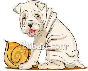 Shar Pei clipart #11, Download drawings