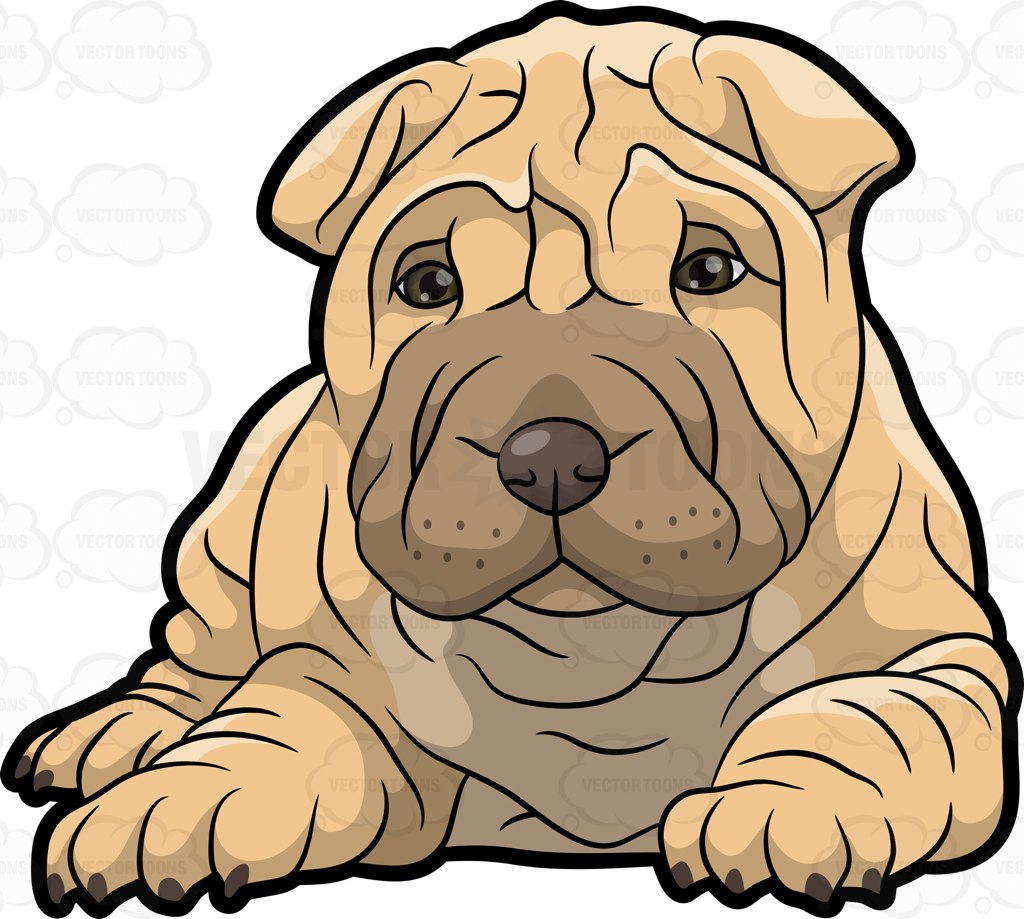 Shar Pei clipart #7, Download drawings