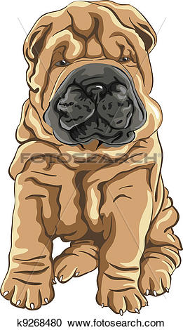 Shar Pei clipart #18, Download drawings