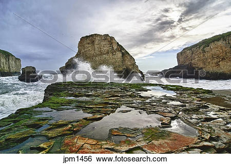 Shark Fin Cove clipart #16, Download drawings