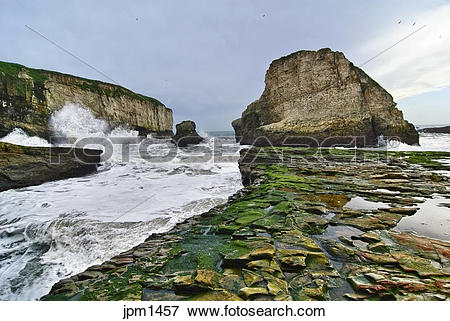 Shark Fin Cove clipart #17, Download drawings