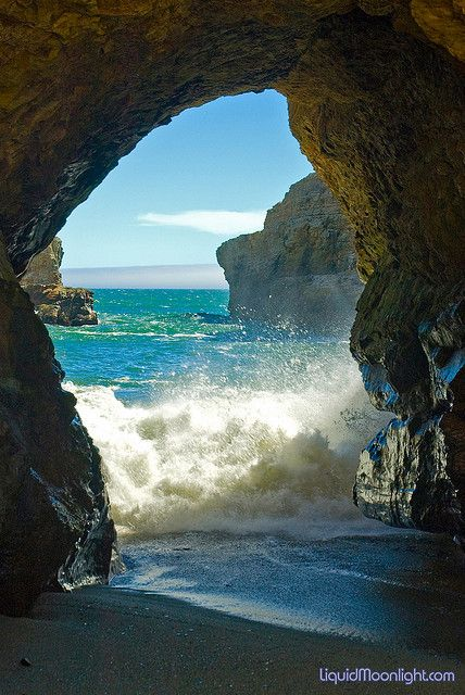 Shark Fin Cove clipart #7, Download drawings