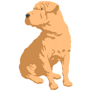 Sharpei clipart #9, Download drawings