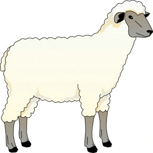 Sheep clipart #10, Download drawings
