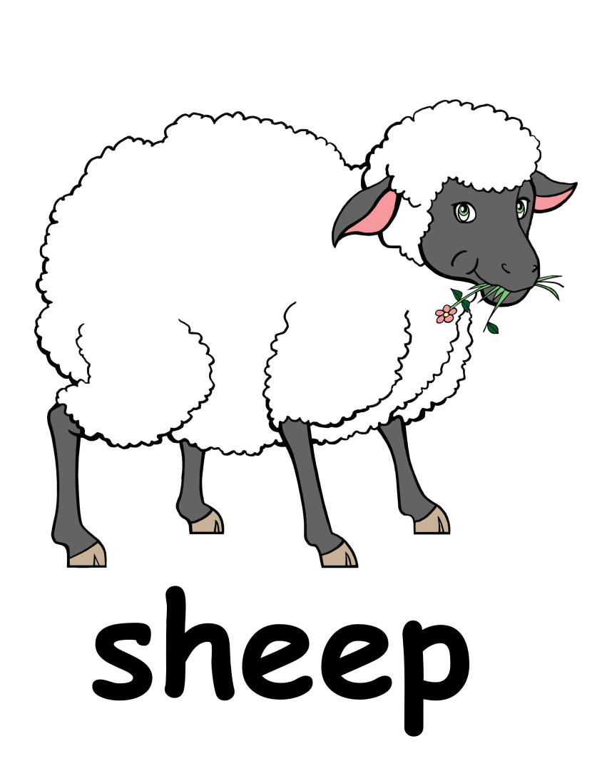 Sheep clipart #13, Download drawings
