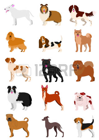Sheepdog clipart #5, Download drawings