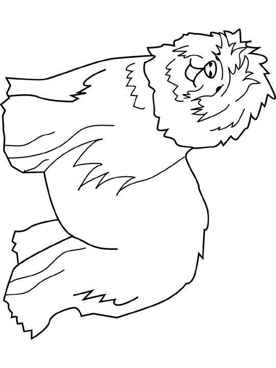 Sheepdog coloring, Download Sheepdog coloring for free 2019