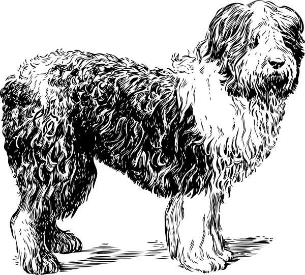 Sheepdog svg #20, Download drawings