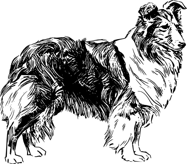 Sheepdog svg #19, Download drawings