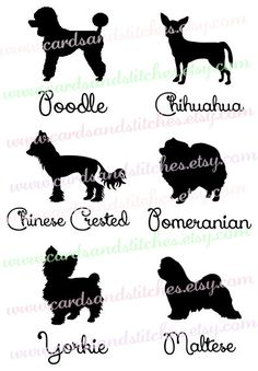 Sheepdog svg #15, Download drawings