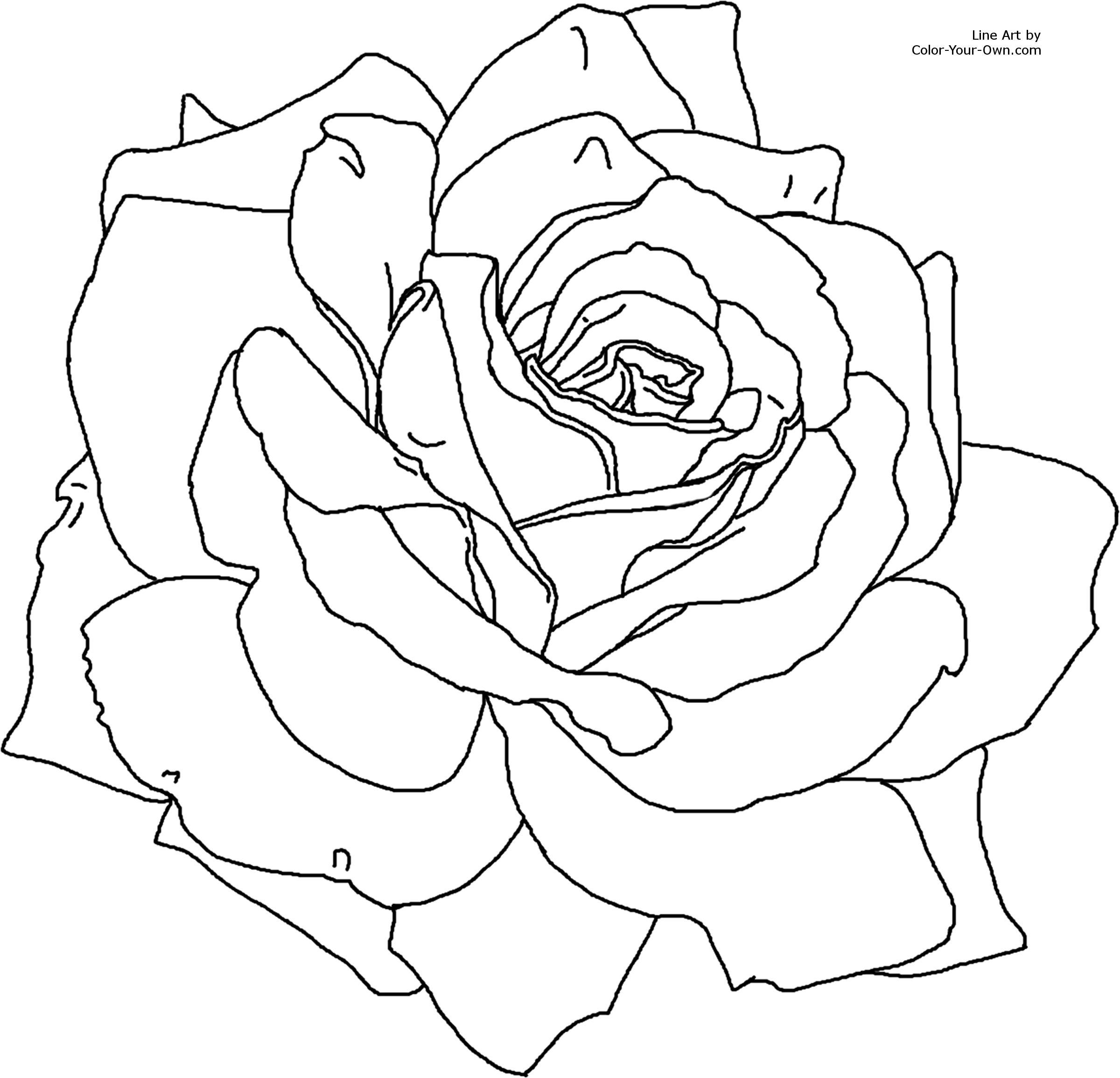 Click N Bloom coloring #15, Download drawings