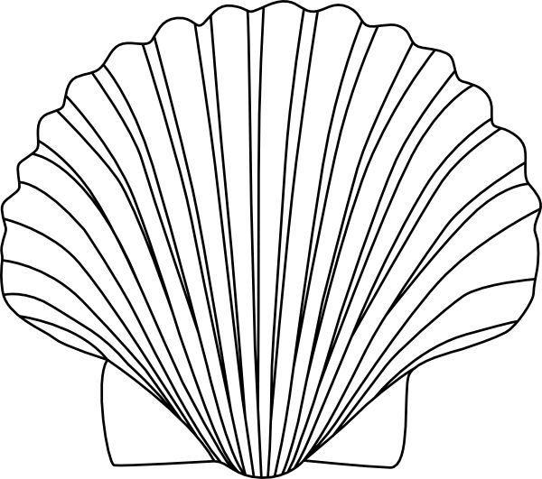 Shell clipart #4, Download drawings