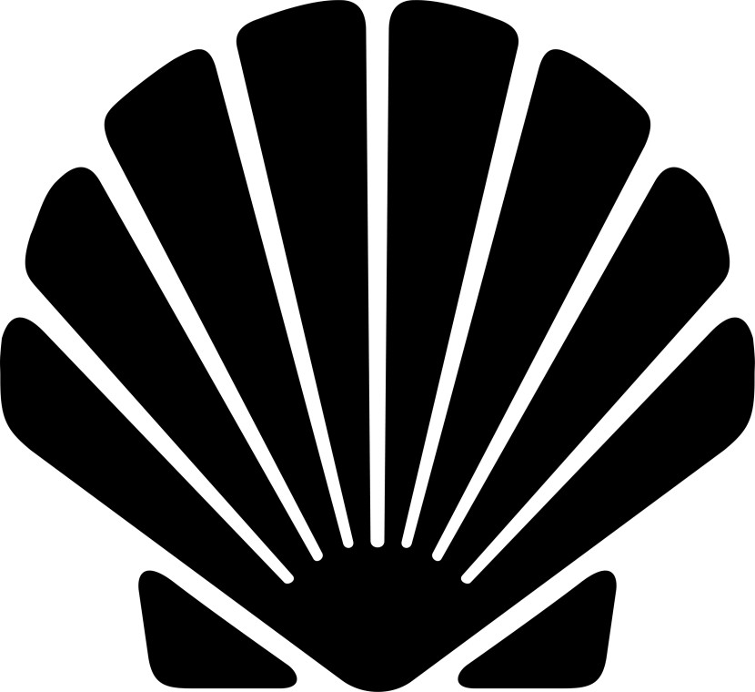 Shell clipart #8, Download drawings