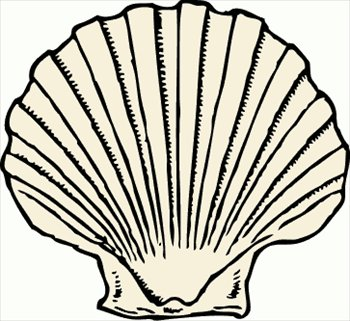 Shell clipart #19, Download drawings