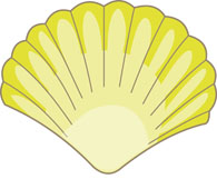 Shell clipart #16, Download drawings