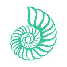 Shell svg #4, Download drawings