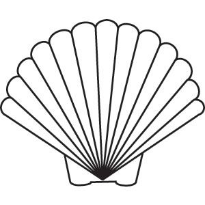 Shell svg #12, Download drawings