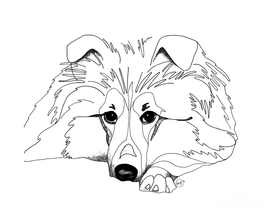 sheep and dogs coloring pages - photo#22