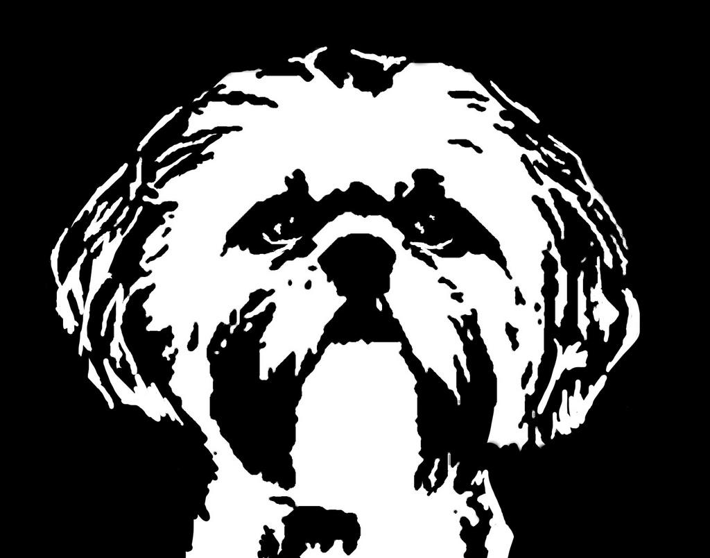 Shih Tzu svg #16, Download drawings