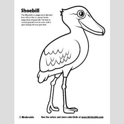 Shoebill coloring #19, Download drawings