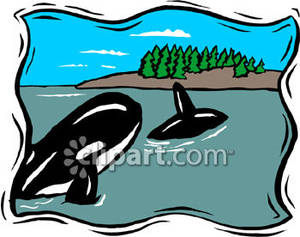 Shoreline clipart #10, Download drawings
