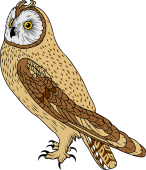 Short-eared Owl clipart #5, Download drawings