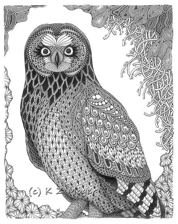 Short-eared Owl coloring #9, Download drawings