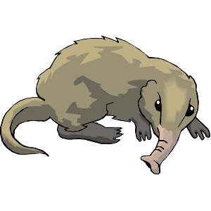 Shrew clipart #15, Download drawings