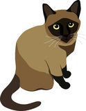 Siamese Cat clipart #8, Download drawings