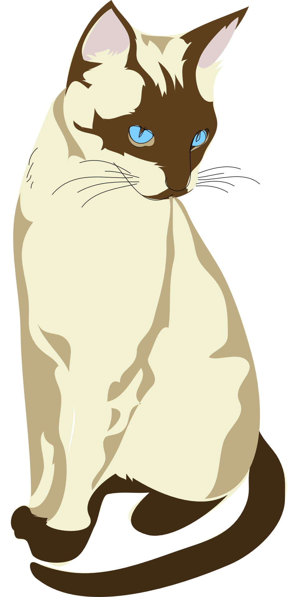 Siamese Cat clipart #19, Download drawings