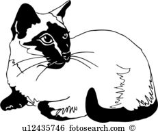 Siamese Cat clipart #4, Download drawings