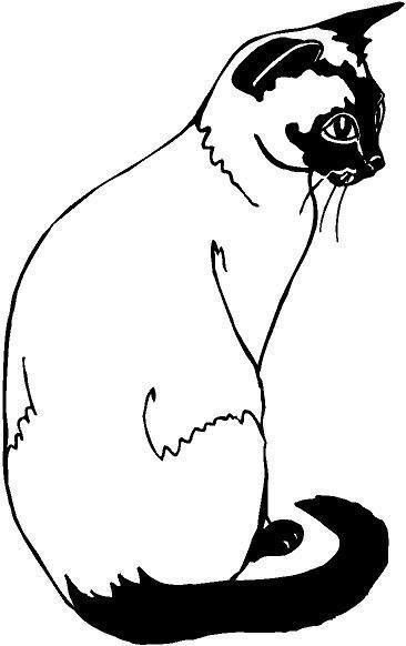Siamese Cat svg #14, Download drawings